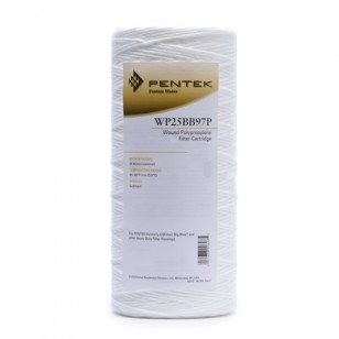 WP25BB97P Pentek Whole House Filter Replacement Cartridge